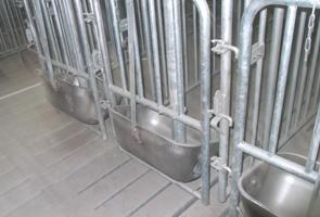 養豚 ストール柵2